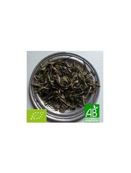 Thé blanc Fujian Bai Mu Dan Chine BIO