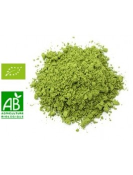 Thé vert Matcha Uji poudre 50g BIO