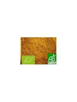 Curry indien mélange 50g Bio