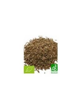 Cumin graines entères 50g Bio
