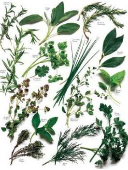 Sel Chiffonnade pour salades 75g Bio*