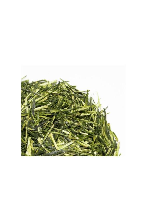 Kukicha thé japonais 70g Bio*