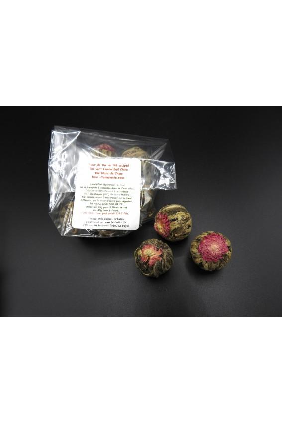 Fleur de thé Amarante par 6