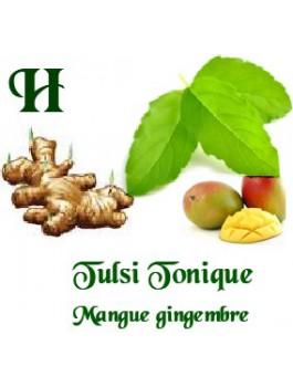 Tulsi Tonique mangue gingembre 75g Bio*