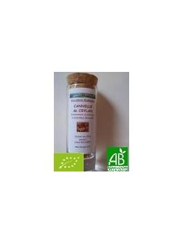 Cannelle poudre 25g Bio