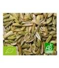 Fenouil graines entères 50g Bio