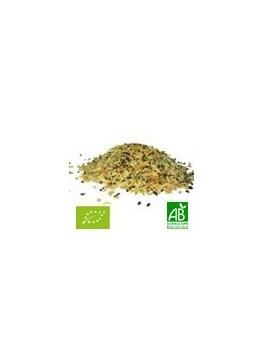 Panch Phoron mélange 45g Bio