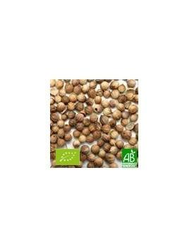Coriandre graines 40g Bio