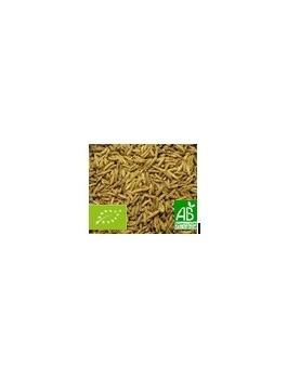 Carvi graines 60g Bio